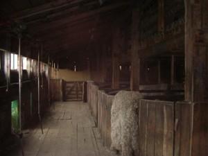 hier wurden die Schafe einst geschoren
