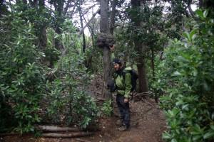 Alex im Canelo-Wald in der Hand einen Knoten, der durch einen Parasitenpilz entsteht