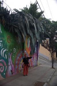 schoene Grafittis und riesengrosse Kakteen