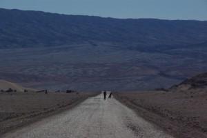 ..man koennte hier fast glauben, der Weg fuehrt ins Nichts bzw. direkt auf den Mond :-)