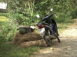 Manchmal muss man sich einfach etwas ausruhen...Vietnamesen sind da seeeehr erfinderisch :-)