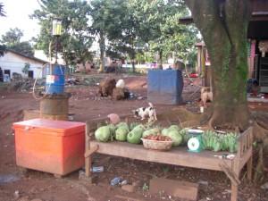 Verkaufsstand mit Obst, Getraenken (in der orangen Kuehlbox) und gleichzeitig - eine Tankstelle :-)