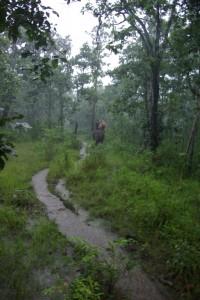 Im stroemenden Regen auf der Suche nach einer Stelle am Fluss, die wir ueberqueren konnten.