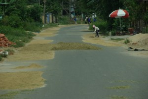 ...immer wieder werde auf- und neben der Strasse Reis, Mais und Chillis getrocknet...