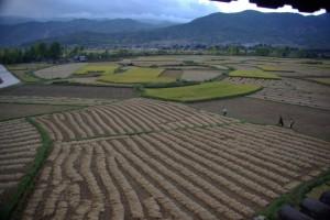 ...noch ein letzter, abendlicher Blick auf die wunderschoenen Reisfelder von Shaxi...