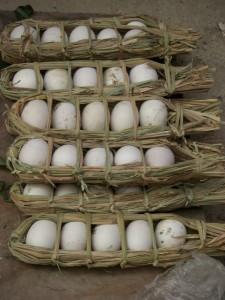 ..sehr natuerlich verpackte Eier..