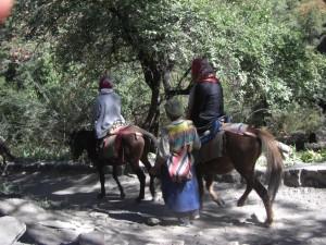 Chinesen beim Abstieg - natuerlich mit Pferd :-)