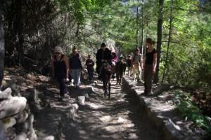 Bergsteigen auf chinesisch - auf dem Ruecken von Pferden bis kurz vorm Ziel, Sauerstoffflasche dabei (2500m)...