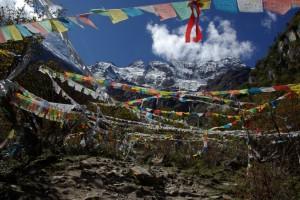 ...die die Aussicht auf die Bergkette einrahmen...