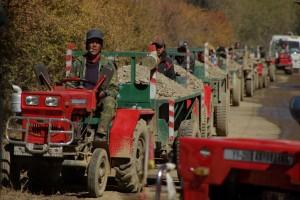 Die lange Reihe der Traktoren die den Schotter fuer den Strassenbau herbringen