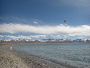 der See erinnert uns sehr ans Meer, die wunderschoenen Bergriesen am anderen Ufer holen uns gedanklich aber doch wieder nach Tibet zurueck