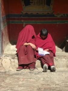 ...im Kloster sieht man viele Moenche und Novizen - allerdings bestimmen die Chinesen wer Moench sein darf...
