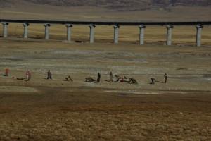 Wahnsinn, die Pilger am Weg Richtung Lhasa