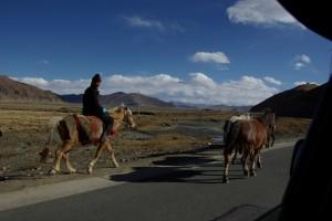 ..und ermoeglicht auch Tibetern an seinem Ufern sesshaft zu leben