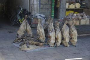 ...was von den Schafen nicht frisch verkauft wird, wird als ganzes Teil getrocknet - im trockenen Tibet kein Problem
