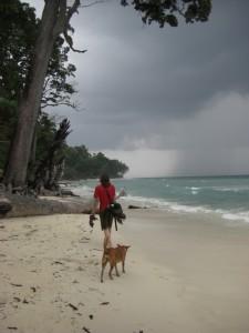 Tja wir sind in den Tropen - ein kurzer Spaziergang am wunderschoenen Strand...