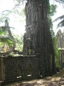 ...der Kirchturm ist fast vollstaendig von den Wurzeln ueberdeckt...