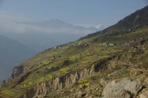 Kurz vor Dunche wird das Tal sehr eng und steil und die Strecke abenteuerlich - aber auf den steilsten Haengen wird noch auf Terassen Reis angebaut