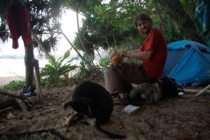 Kokosnuesse werden bei den vielen Kokospalmen einfach vom Boden aufgesammelt und geschaelt - immer dabei unser Wachhund Knoedel...