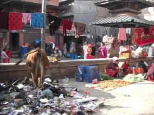 nepalesisches Strassenleben...der Muell, die Kuehe, Gemueseverkauf, trocknende Waesche,...