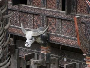 Immer wieder die wunderschönen Häuser, fein verziert und geschmückt mit den Köpfen der Wasserbüffel -je mehr Köpfe dran sind desto reicher und angesehener der Besitzer