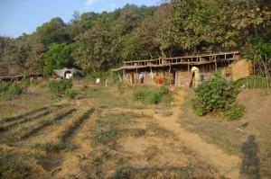 Unser Haeuschen in der Bucht liegt mitten in den kargen Reisfeldern...