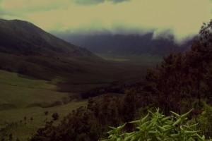 ...und ueppig gruene Dschungelvegetation miteinander ab...