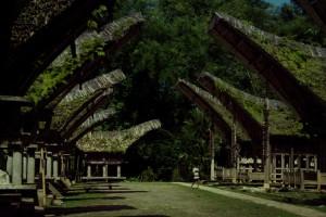 Seehr imposant die Konstruktionen, hunderte von Jahren alt und Eines schöner wie das Andere