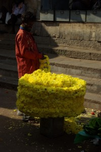auch wahnsinnig bunt sind die diversen Blumenstaende...