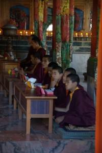Novizen beim Rezitieren von Mantras - wir fuehlen uns sehr nach Tibet zurueck versetzt
