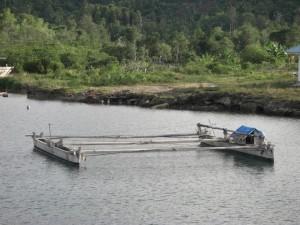 Das traditionelle Transportmittel auf den Togeans - den Ausleger braucht es, weil die Boote möglichst flach sein sollen für die Riffe