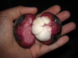 Als Wegzehrung zum Flughafen gabs noch Mangis - DIE lokale Frucht, extrem süß aber echt super